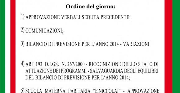 Consiglio_Comunale_29_09_2014_x_anteprima_web