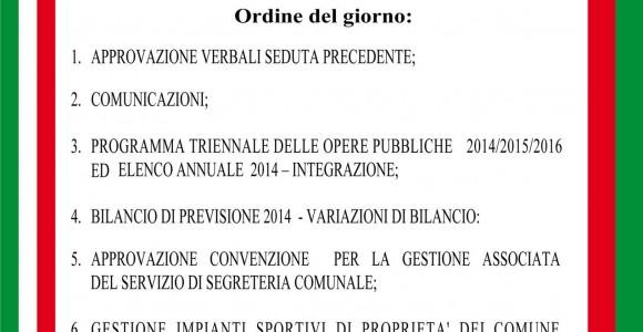 Consiglio_Comunale_4_8_2014
