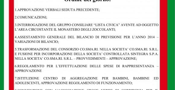 Consiglio_comunale_28_11_2014